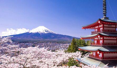 Quy trình nộp hồ sơ visa Nhật Bản
