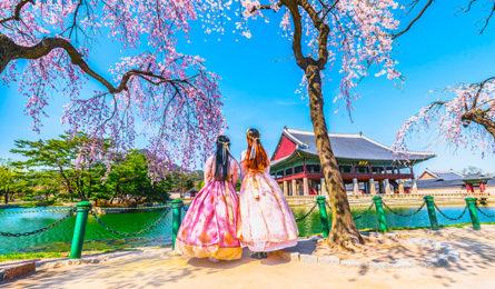 Thủ tục Visa thăm thân Hàn Quốc