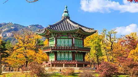 Thông tin Visa Hàn Quốc