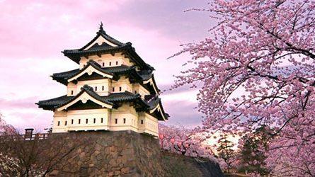Thủ tục & Hồ sơ làm Visa đi Nhật Bản