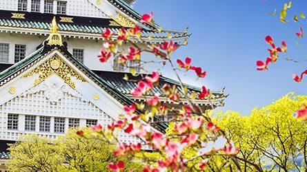 Thủ tục Visa du lịch Nhật Bản
