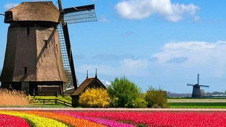 Quy trình nộp hồ sơ xin visa Hà Lan