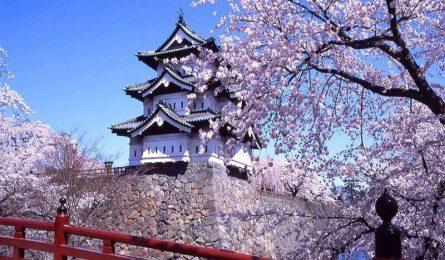 Những điều cần lưu ý khi xin Visa du lịch Nhật Bản mới nhất 2019