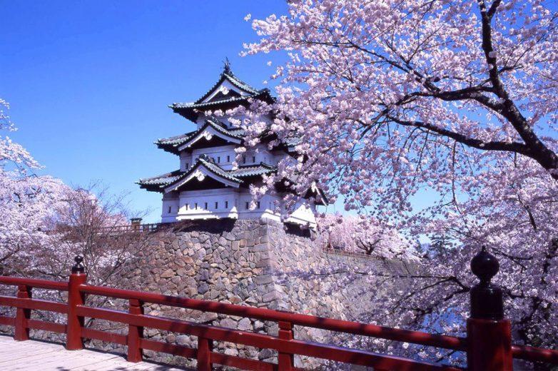Đại sứ quán Nhật Bản thông báo quy định mới về xin visa du học Nhật theo hình thức học tiếng