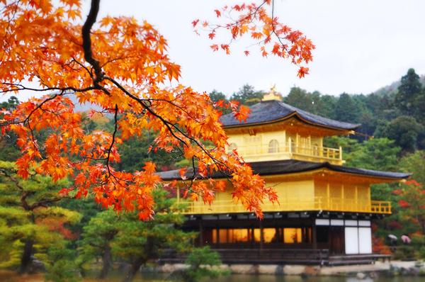 Mẫu thư mời, thư bảo lãnh, lịch trình xin visa thăm thân Nhật Bản
